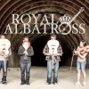 Royal-Albatross-02